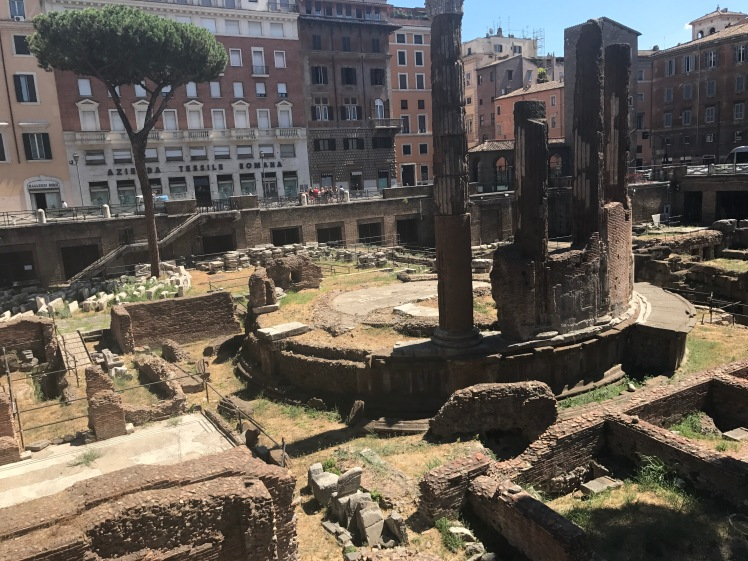 Ancient temple ruins at Largo di Torre Argentina