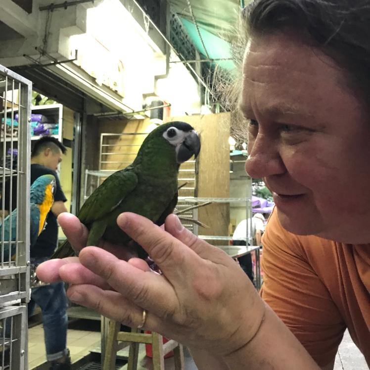 Finding a parrot friend at the Yuen Po Bird Garden